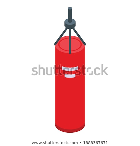 Punching Bag isometric icon vector illustration Stock photo © pikepicture