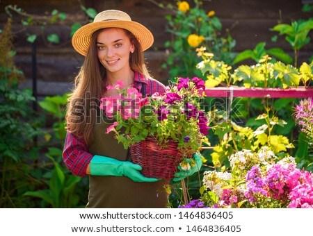 Portrait jardinier alimentaire homme jardin travailleur Photo stock © photography33