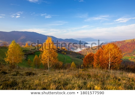 Stock photo: Distant Mountain View