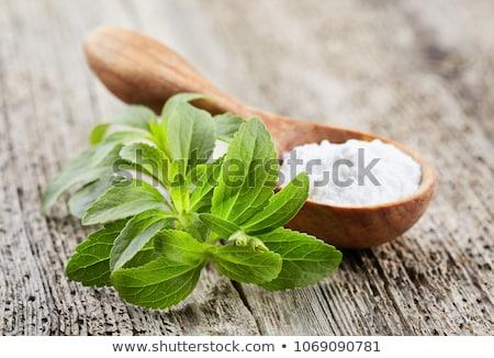 Doce folha planta raio isolado branco Foto stock © smuki