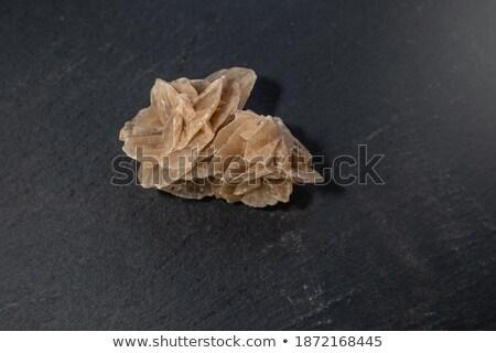 Pustyni wzrosła mineralny odizolowany biały charakter Zdjęcia stock © jonnysek