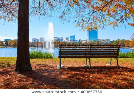 ヒューストン 公園 草 緑 青 芝生 ストックフォト © lunamarina