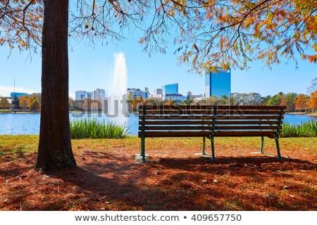 Houston park çim yeşil mavi çim Stok fotoğraf © lunamarina