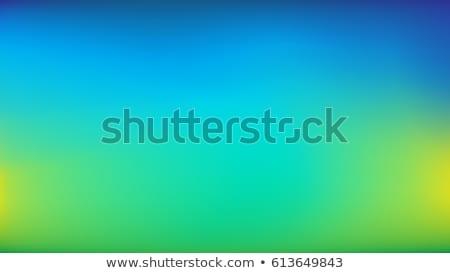 Brilhante fluido cores moderno azul verde Foto stock © SArts