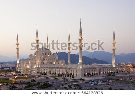 мечети Объединенные Арабские Эмираты небе Palm архитектура новых Сток-фото © dashapetrenko
