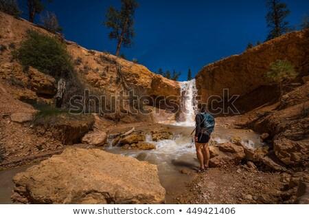 каньон декораций парка Юта США горные Сток-фото © prill