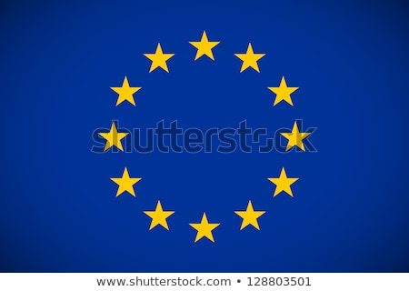 European union flag, vector illustration on a white background Stock photo © butenkow