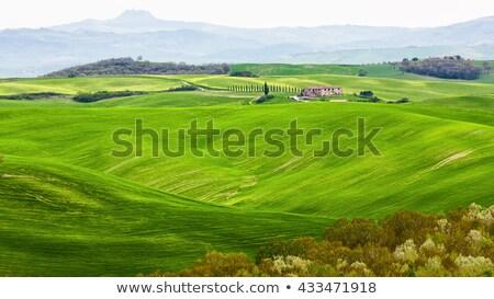 manzara · Toskana · bahar · doğa · güzellik · dağ - stok fotoğraf © wjarek