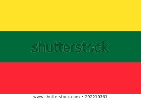 Vlag Litouwen schaduw witte achtergrond zwarte Stockfoto © claudiodivizia