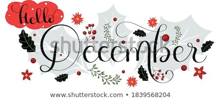 декабрь типографики древесины ретро-стиле Label Сток-фото © maxmitzu