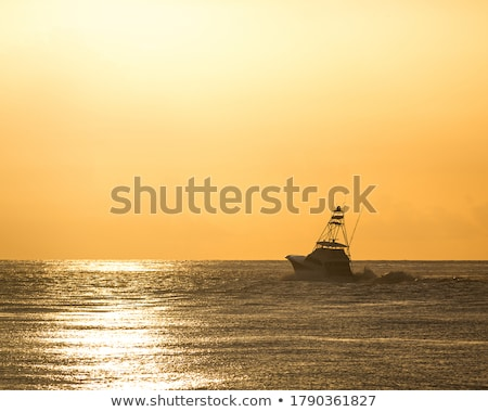 fishing at sunset stock photo © mikdam