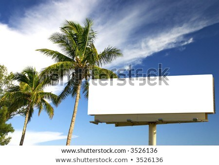 Blank billboard with tropical palm trees Stock photo © d13