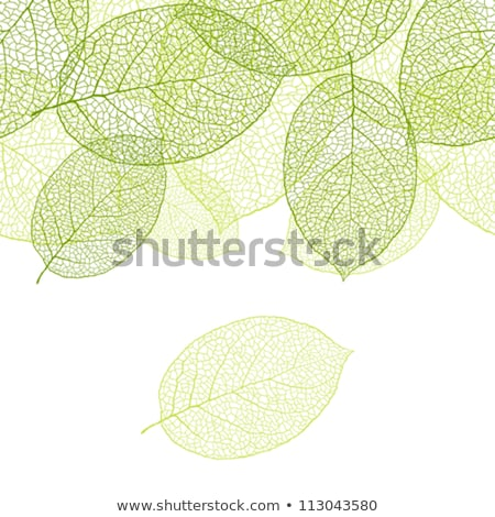 バイオ 新鮮な 薄緑 デザイン 自然 ボール ストックフォト © Wetzkaz