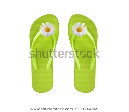 pink beach shoes with chamomiles isolated on white Stock photo © tetkoren