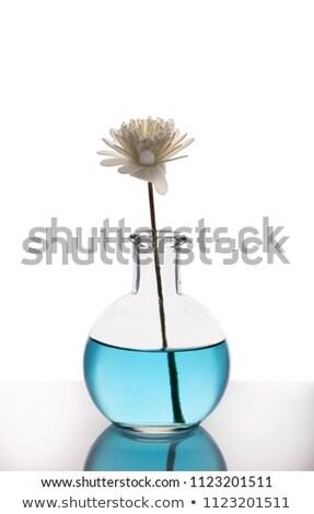 Levegő üveg bambusz bot aromaterápia izolált Stock fotó © Lana_M