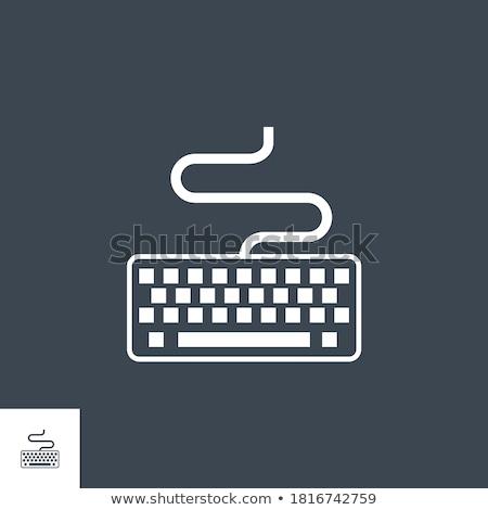 Keyboard related vector glyph icon. Stock photo © smoki