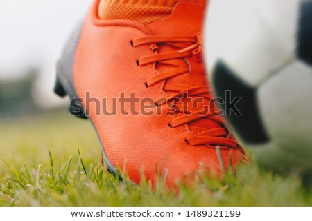 Kicking the soccer ball; close-up and low angle view Stock photo © matimix