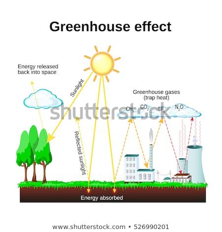 Diagram mutat globális felmelegedés Föld illusztráció háttér Stock fotó © bluering