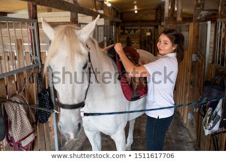 Young active woman putting saddle on back of white purebread racehorse Stock photo © pressmaster