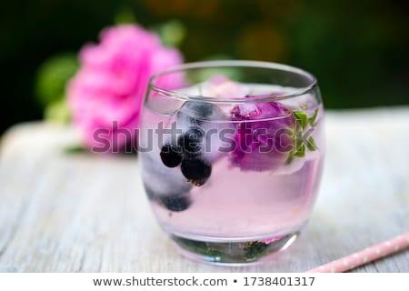 Stockfoto: Bevroren · bloemen · bloesems · Ice · Cube · ontwerp · achtergrond