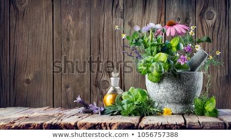 Natürlichen Abhilfe Heilung Kräuter Medizin Holztisch Stock foto © JanPietruszka