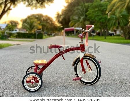 üç tekerlekli bisiklet ince hat vektör web Stok fotoğraf © smoki