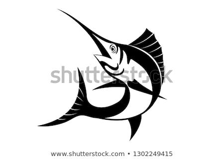 Atlantic Sailfish Jumping Cartoon Black and White Stock photo © patrimonio
