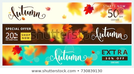September Sale Autumn Foliage Header Stock photo © limbi007