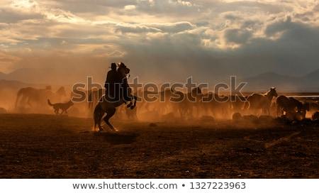 Stock photo: Cowboy riding a horse in the desert