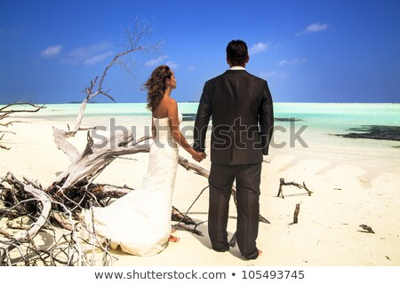 Bride and groom posing on beach with driftwood Stock photo © chrascina