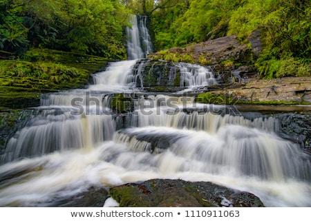 mclean falls in the catlins stock photo © 3523studio