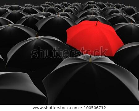 legjobb · védelem · szürke · esernyők · nagyító · fókuszál - stock fotó © dacasdo