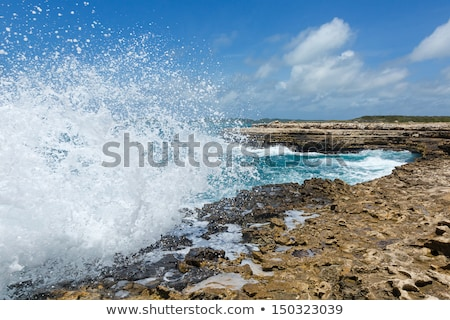 Waves Crashing Over Limestone Ocean Coastline Stock photo © scheriton