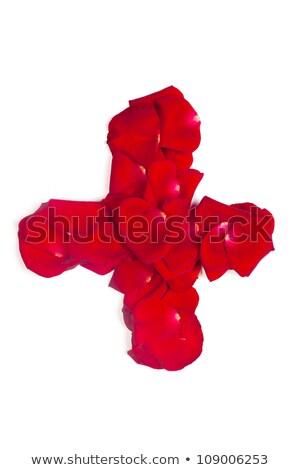 Felirat meg piros szirmok rózsa fehér Stock fotó © bloodua