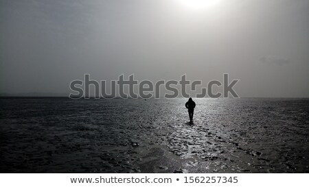 man walking in tidal flat Stock photo © meinzahn