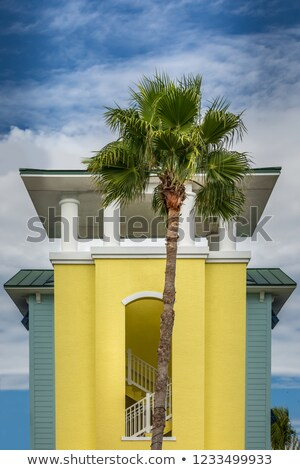 beautiful houses in art deco style in south miami stock photo © meinzahn