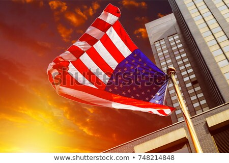 Stock photo: Miniature Flag of New York City