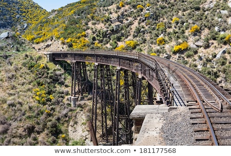 railway bridge up taieri gorge new zealand stock photo © backyardproductions