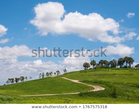 Zöld domboldal fényes kék ég tavasz háttér Stock fotó © THP