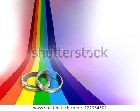 Jegygyűrűk homoszexuális szimbólumok izolált fehér szeretet Stock fotó © tashatuvango