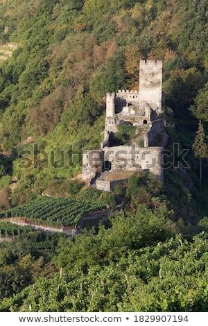 Castillo ruina pared Europa torre vina Foto stock © LianeM