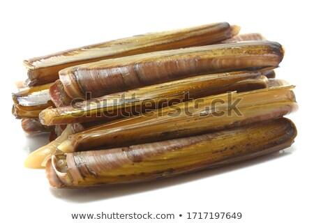 borotva · tengeri · hal · csemege · hal · piac · kagylók - stock fotó © pumujcl
