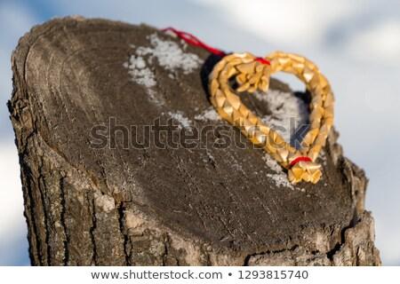 Kalpler havlama yosun beyaz ahşap düğün Stok fotoğraf © Zerbor