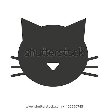 кошки лице силуэта иллюстрация тигр природы Сток-фото © silverrose1