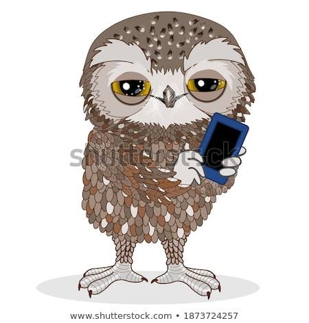 Eulen zellulären Illustration Telefon Technologie Vögel Stock foto © adrenalina