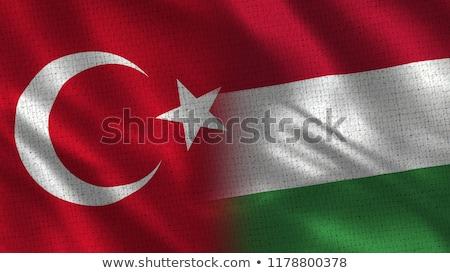 Turquia Hungria bandeiras quebra-cabeça isolado branco Foto stock © Istanbul2009
