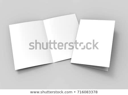 белый черный красный буклет изолированный Сток-фото © daboost