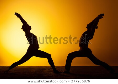 két · személy · gyakorol · jóga · naplemente · fény · kettő - stock fotó © master1305