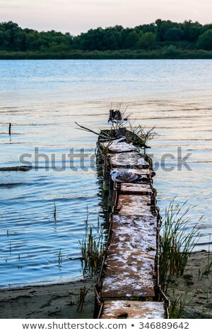 seagull sits on a pontoon with sunset and ocean in background at Stock photo © meinzahn