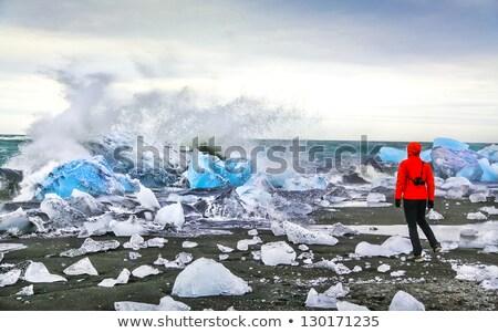 Panorama of the Jokulsarlon lagoon Stock photo © elxeneize